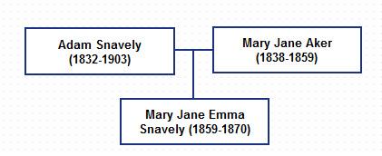 family graph01