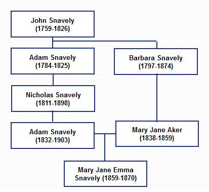 family graph03